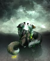 Calling the storm by LiaBorderCollie