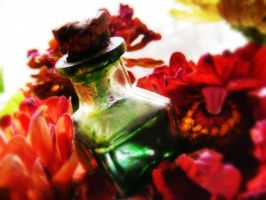 Ink bottle by topucci