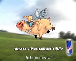When Pigs Fly by gpstudios
