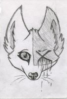 Fox by luckylucy99