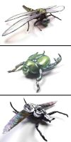 more insect brooches by Chilkat