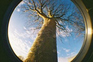 Fisheye by iXusboy