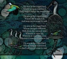 Oh woe is the caged bird by MicciB