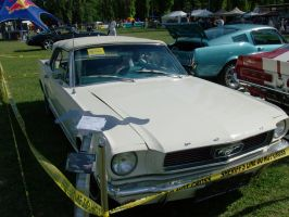 Mustang Cabrio by Mate397