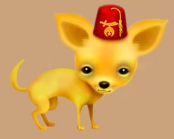 Shriner Chihuahua by ScaryDeadGirl
