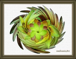 Floral Ornament by rembrantt