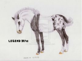 Legend 3245 -Ref- by Myhorsephoenix