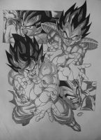 Dragonball Z - Black and White Goku VS Vegeta V3 by TriiGuN