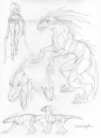 Raptor Doodles by Anuwolf