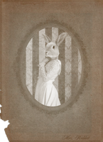 Victorian Portraits: Mrs. Rabbit by Violet-kill