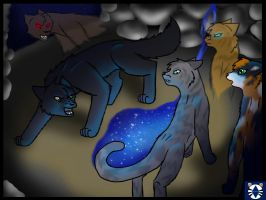Jayfeather vs. Breezepelt by leaderofmoonclan