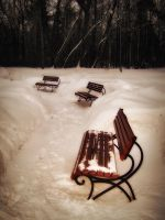 Benches in the snow by OlgaCherkasova