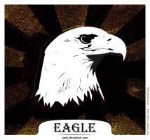 Eagle by ayeb