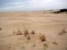 Dunes2 by vintage-stock