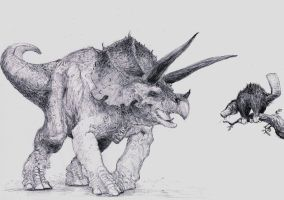 platypus facing triceratops by Zombiraptor