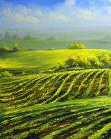Barossa valley by oilart