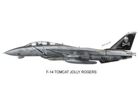 VF-103 Jolly Rogers by peter-pan03