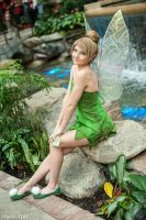 Tinkerbell by ReneeRouge