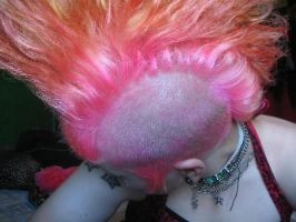 mohawk by cadaverghoul