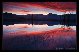 Eastern Sierra Reflection by narmansk8