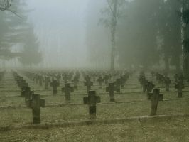 Cementary by sh4hid