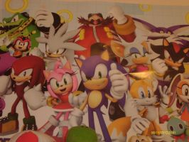 Sonic and Friends poster2 by BlazetheCat1445