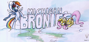 Michigan Bronies, Banner by FrostieFilly