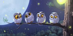 Owls by bib0un