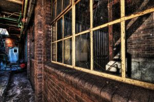 A Seedy View by photorealm