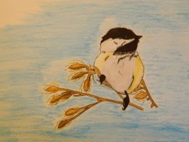 Chick-a-dee watercolor pencil painting by LexyLou16