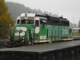 BN 2832, Yard Power on a Rainy Day by TomRedlion