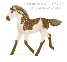 Foal #7723 by NorthEast-Stables