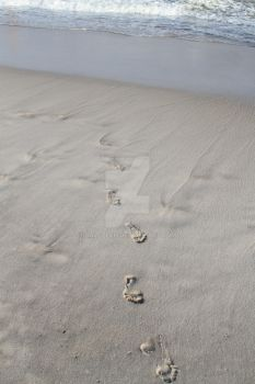 footprints in the sand... by daletech