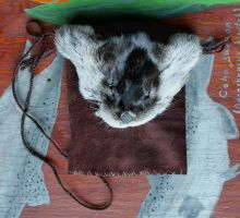 Otter Fur and Leather Pouch by lupagreenwolf