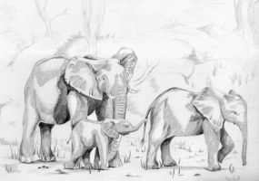Elephants by bananacosmicgirl