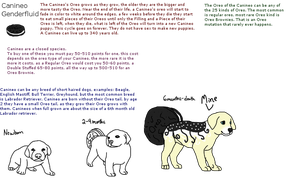Canineo Reference|New Closed Species|Customs Open by AusieOtterPie