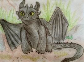 TOOTHLESS *--* by csicsus