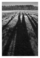 Shadows - 02 by AndreasResch