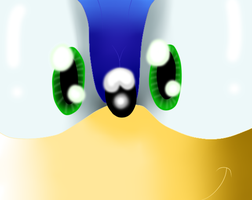 Sonic Look by BechaXFluo