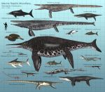 Marine Reptile Miscellany by PaleoGuy