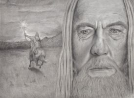 Gandalf The Gray by Blackthourn