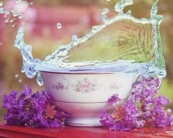 Alabama Teacup I by LashelleValentine