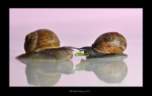 Sharing is Caring by MichelleRamey
