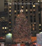 Rockefeller Center Tree, NYC by Sister-of-the-Moon