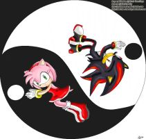 Amy and Shadow .::Ying-Yang::. by navi-the-cute-fairy