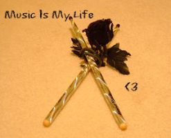 Music Is My Life by BloodStainedSharpie