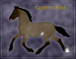 1252 Cavitto Foal Design by TheMs0kitty