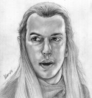 Haldir o Lorien (Lord of The Rings) by ihsans-Art