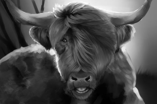 Cow by Delkkat