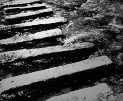 Stepping Stones by madaboutvampires